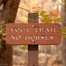 Foot Trail – No Horses