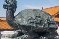 Turtle, Symbol of Longevity