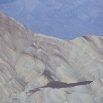 Zabriskie Point at Dusk