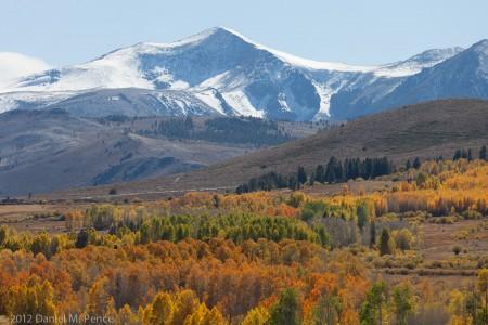 Dunderberg Peak and Meadow