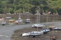 Low Tide, Gwynedd, North Wales