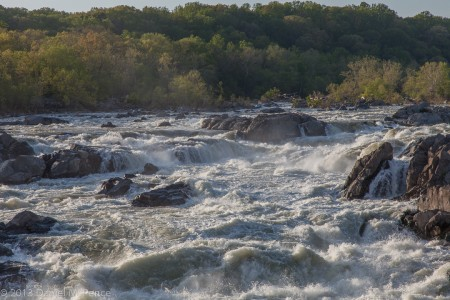 Great Falls of the Potomac, Flood Stage, April 2013