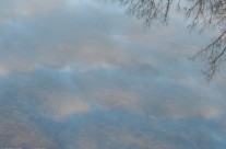 Reflections of the sky, C&O Canal