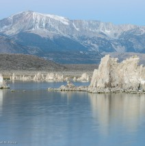 Tufa at Dawn with Snow-capped Sierras