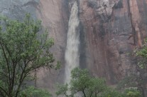 Sudden Waterfall at the Temple of the Sinawava