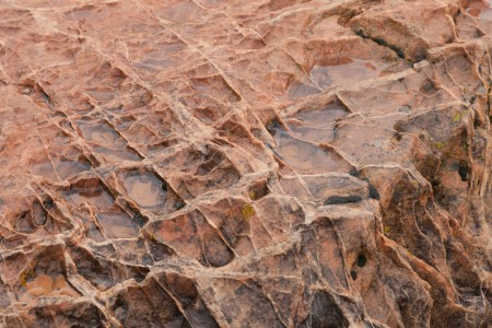 Patterns in the Rock