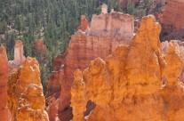 Navajo Loop Trail – Descending