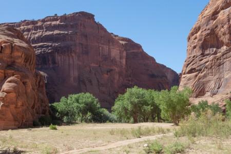Lush Canyon